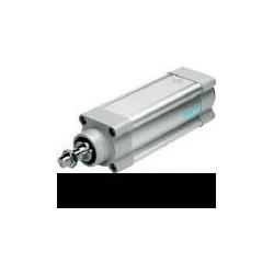 ACTUADOR LINEAL  DGC-K-50-300-PPV-A-GK 1312504